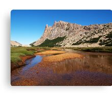 Cerro Catedral Range     Argentinian Andes Canvas Print