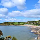 Langland Bay, Gower Peninsula by Paula J James