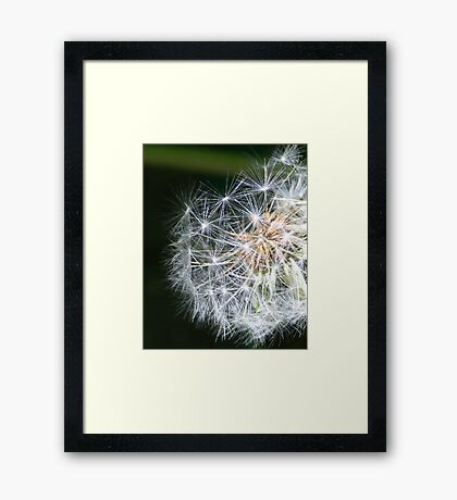 Metaphysics of Now Framed Print