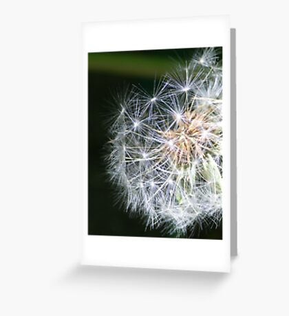 Metaphysics of Now Greeting Card
