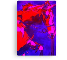 Pony In Neon Pink and Blue Canvas Print