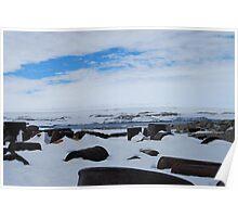 Antarctic Rubbish Poster