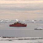 Aurora Australis Ship - Antarctica by cactus82