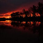 Loxton Sunset by RickyC