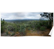 Mt Dale, View from the top, panorama Poster