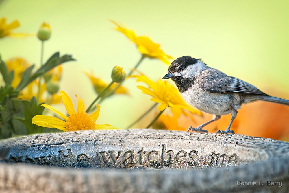 I know He watches me . . . by Bonnie T.  Barry