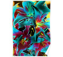 Solarized Oriental Lillies Poster