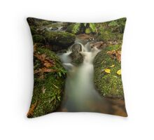 Mclarens Enchanted Drift Throw Pillow