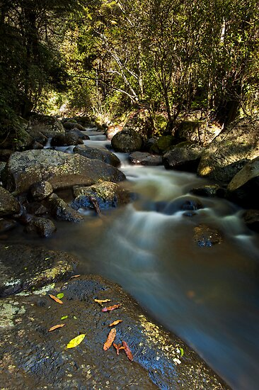 Kaiate river run drift by Ken Wright
