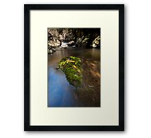 Kaiate dappled light Framed Print