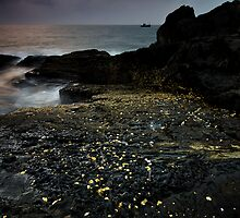 All that glitters is not gold... by Deepak Varghese