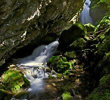 Goat Falls - Snoqualmie N. F. by Mark Heller
