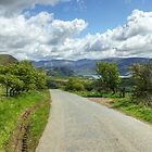 The Road To Ennerdale by VoluntaryRanger