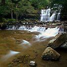 """Liffey Falls"" ∞ Liffey, Tasmania - Australia by Jason Asher"