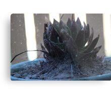 Creepy Cactus Metal Print