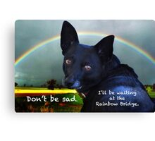 Sypathy Card For Loss Of Pet Dog Canvas Print