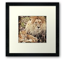 Father & sons Framed Print