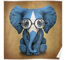 Baby Elephant with Glasses and Somali Flag Poster