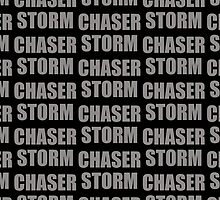 Storm Chaser by chantelle bezant