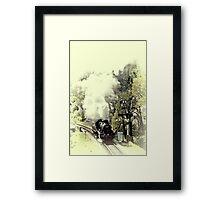 78019 Framed Print