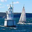 Sailing away by Antonia  Valentine