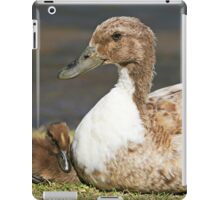 duck and duckling iPad Case/Skin