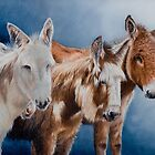 The 4 Musketeers by Pauline Sharp