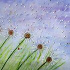 Wishers by Deb Coats