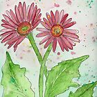 Gerber Daisy by Deb Coats
