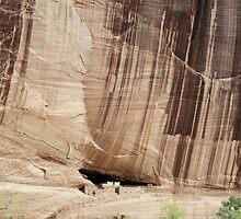 White House Ruins, Canyon de Chelley, Arizona by Pete Paul