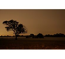 Woken from field of dreams to return home to sleep... Photographic Print