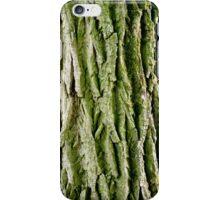 Tree Bark (Poplar Tree) iPhone Case/Skin