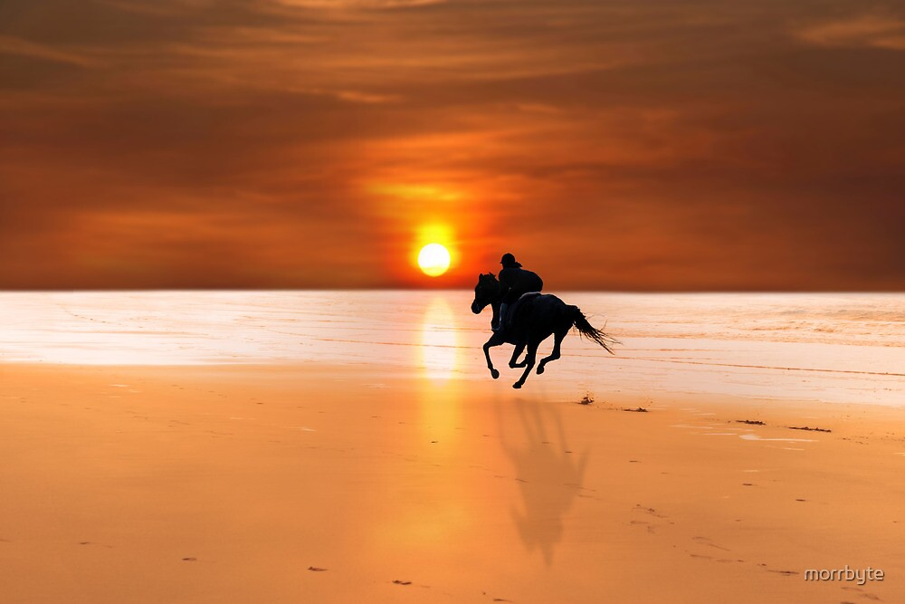silhouette of a horse and rider galloping by morrbyte