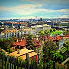 St.Wenceslas vineyard - Prague Castle by Kristina R.