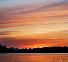 Sunrise Sky by Lynnette Peizer