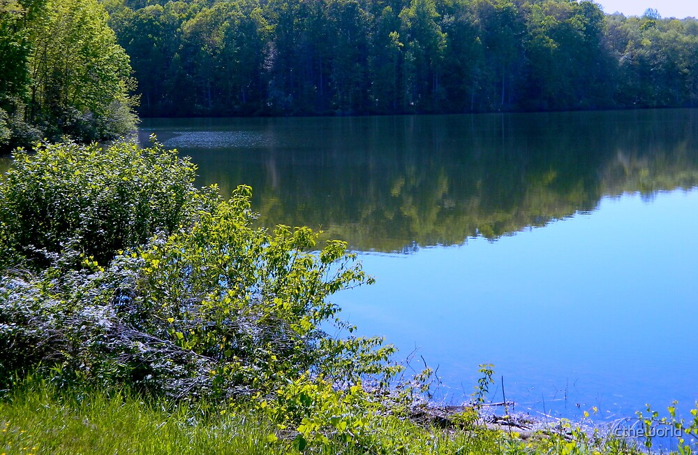 Lake Reflections by ctheworld
