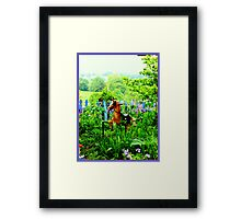The Rocking Horse in the Garden Framed Print