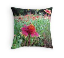 The Wrinkles in Life - Indian Blanket Flower Field Throw Pillow