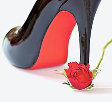 The Rose & Shoe by fernblacker