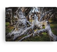 Fallen from Grace Canvas Print