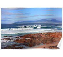 Raw Tasmania Poster