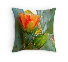 """Desert Spring"" Throw Pillow"