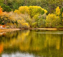 Autumn by the Lake - Mt Lofty Botanic Gardens, Adelaide Hills, SA by Mark Richards