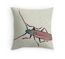 Longhorn Beetle - Cerambycidae Throw Pillow