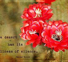 Desert Blossom by photecstasy