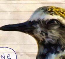 Bird Notes: Shine Sticker