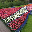 Flamboyant Flowerbed - Keukenhof Gardens by BlueMoonRose