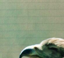 Bird Notes: Enthusiasm Sticker