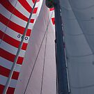 Full sail ahead by Marilyn Bell