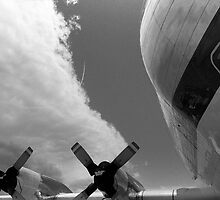 Super Guppy by James2001